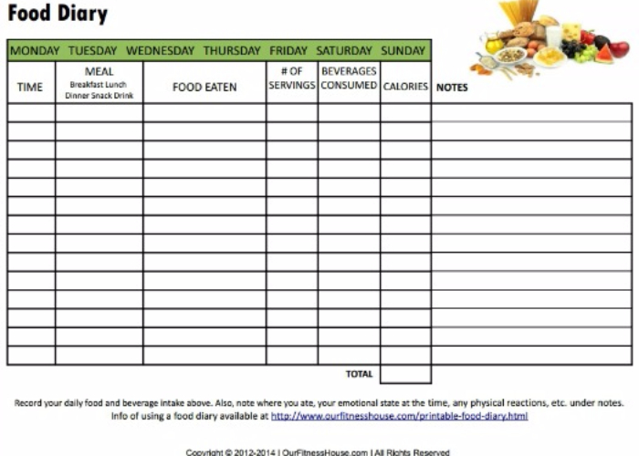 Diary Template by WhiteLilly2  Teaching Resources  Tes